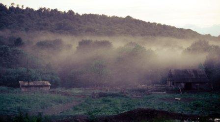 Приют в тумане